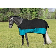 Horseware Mio Turnout Medium Black and Turq 200g